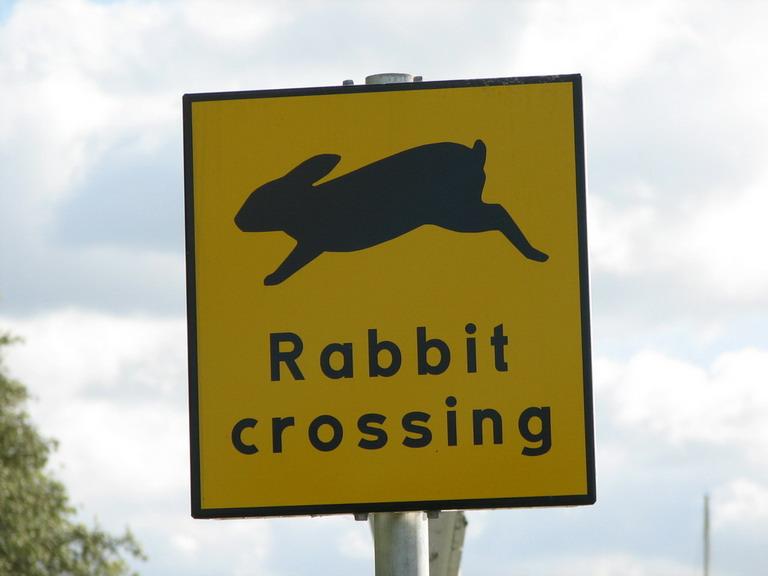 Schild Rabbit Crossing am Göta Kanal