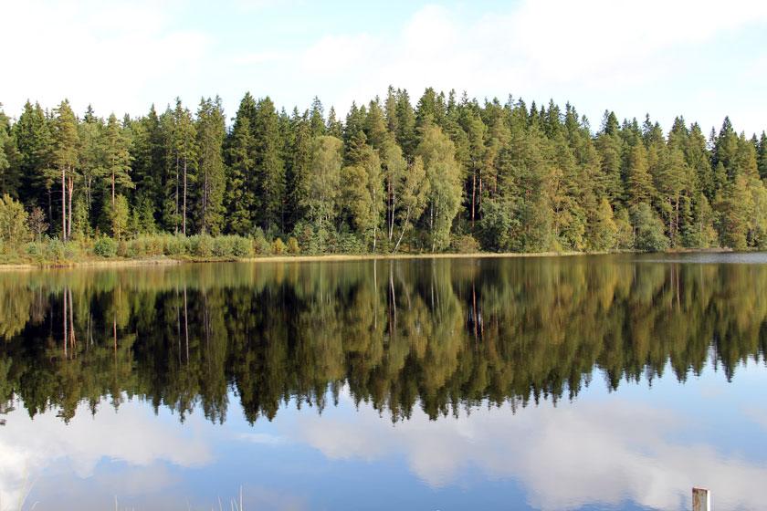 Beitragsbild Schweden 2010