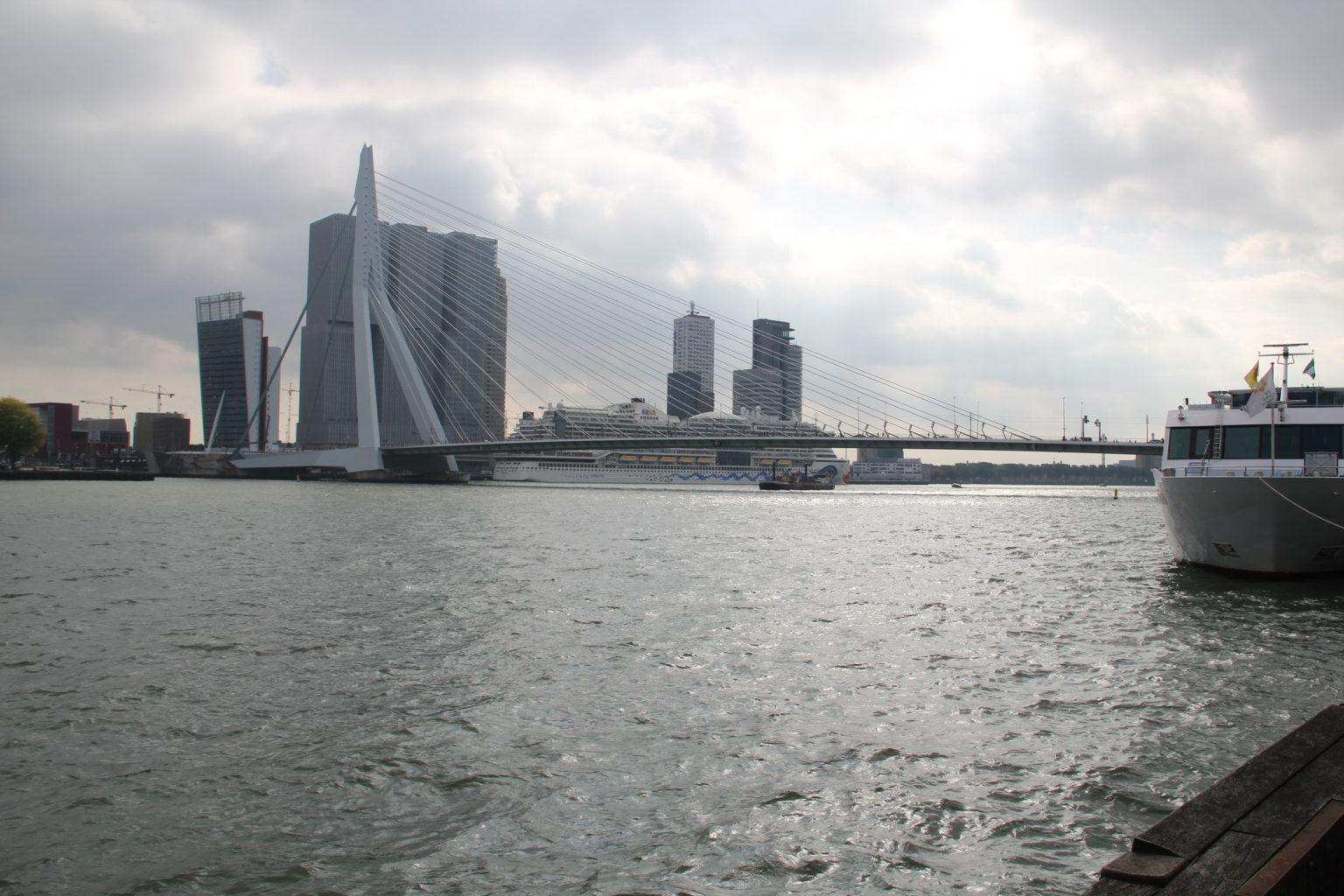 Erasmusbrücke und AIDA