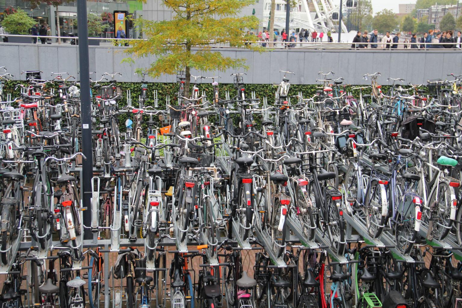 Fahrraeder in Rotterdamm